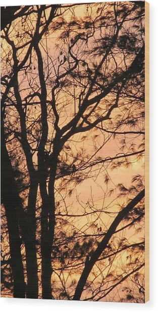 Orange Silhouette Wood Print