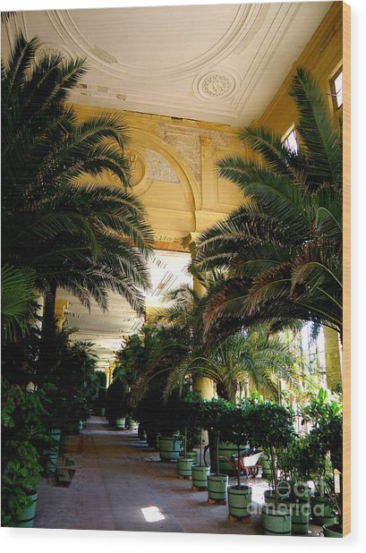 Orangerie Sanssouci Wood Print by Tanya  Searcy