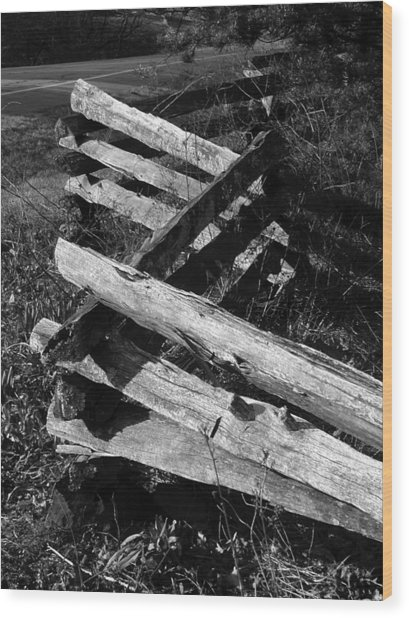 Orchardfence Wood Print by Curtis J Neeley Jr