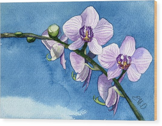 Orchid Wood Print by Eunice Olson