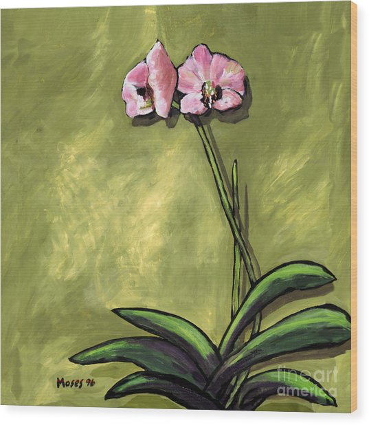 Orchid On Olive Wood Print
