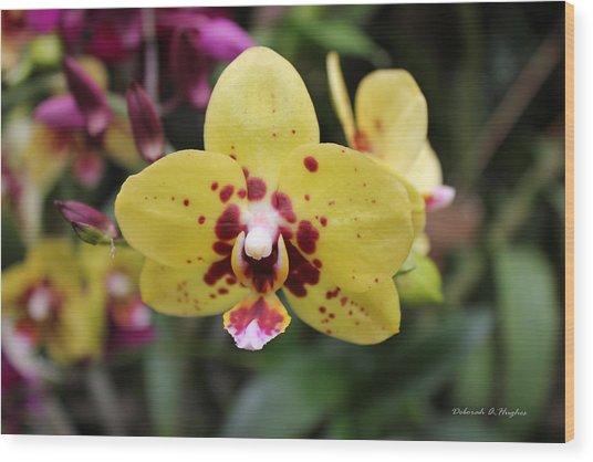 Orchid Tie Dye Wood Print