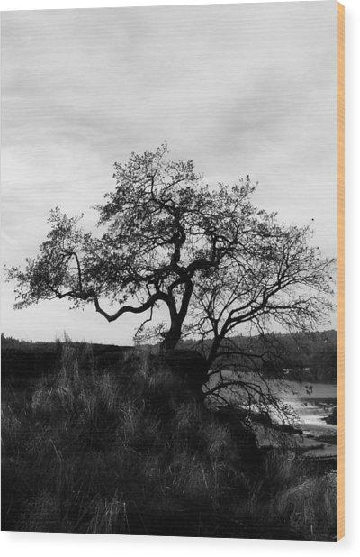 Oregon City Tree Wood Print