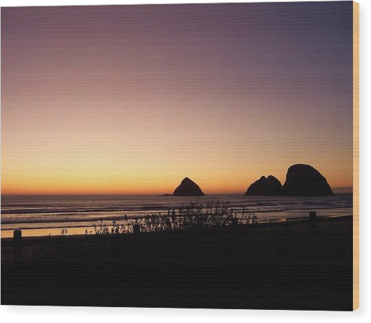 Oregon Coast 16 Wood Print