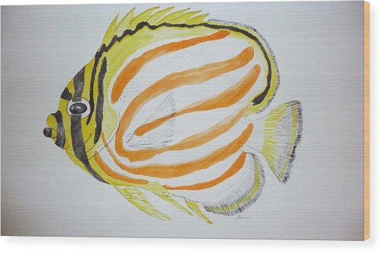 Ornate Butterfly Fish Wood Print by Tim Forrester