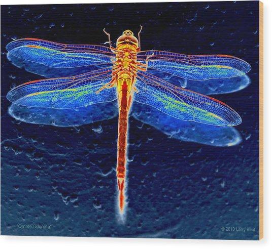 Ornate Odonata Wood Print