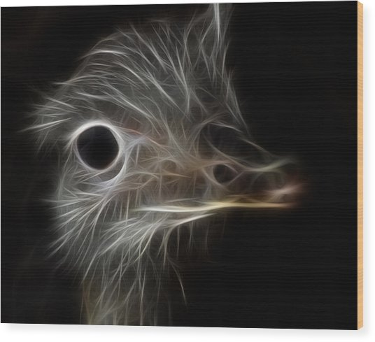 Ostrich Fractalius Wood Print
