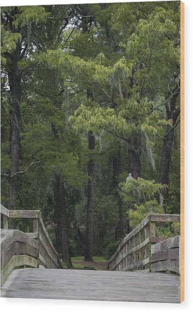 Over The Bridge Wood Print by Christina Durity