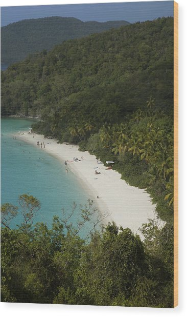 Overhead Of Trunk Bay Wood Print by Margie Politzer