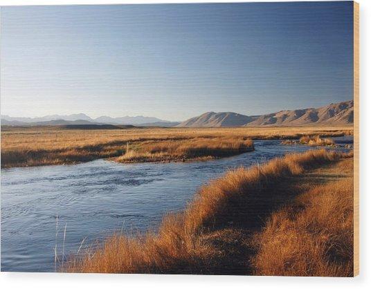 Owens River Wood Print
