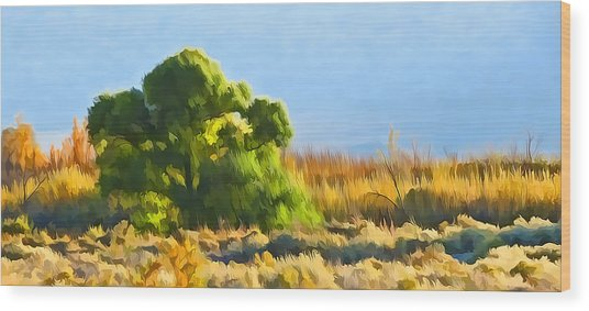 Owens Valley Tree And Brush Wood Print