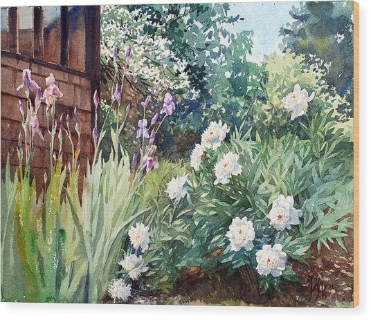 Oxenden Peonies Wood Print by Peter Sit