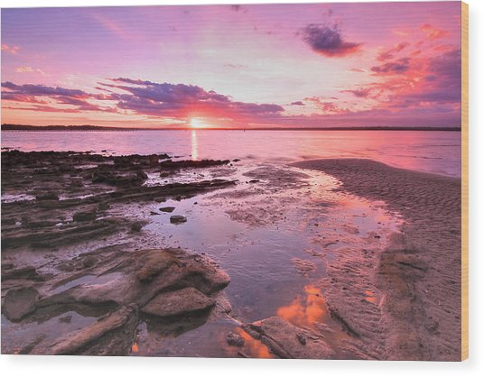 Oyster Cove Sunset Wood Print