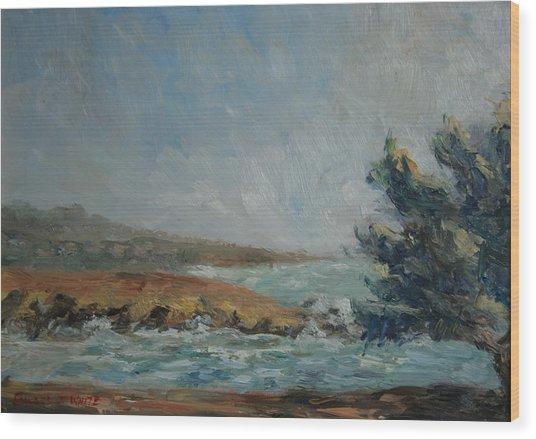 Pacific Air Cambria Coast Wood Print