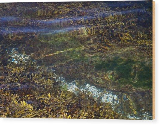 Pacific Calm 3 Wood Print by David Kleinsasser