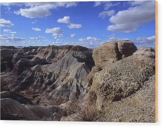 Painted Desert Blue Sky Wood Print