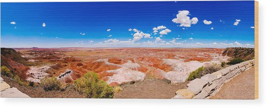 Painted Desert Panorama Wood Print by David Waldo