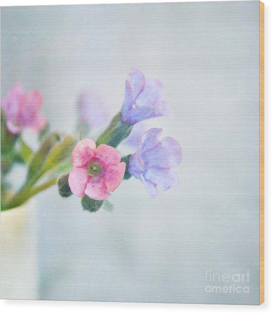 Pale Pink And Purple Pulmonaria Flowers Wood Print
