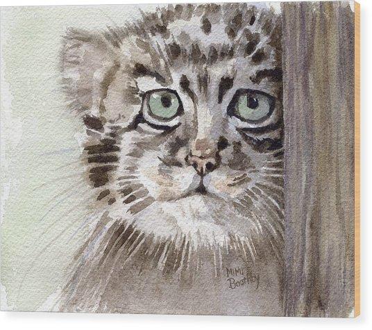 Pallas Cat Wood Print