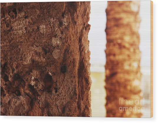 Palm And Wall 2 Wood Print
