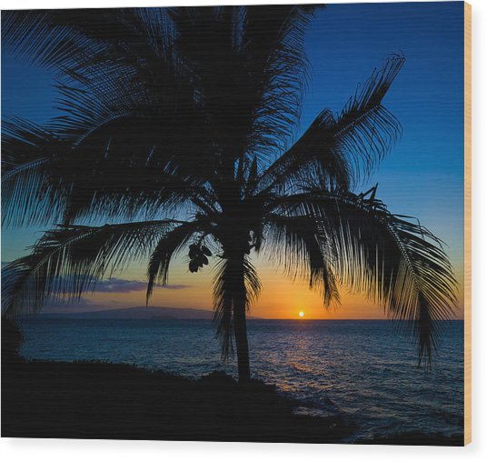 Palm Sunset Wood Print