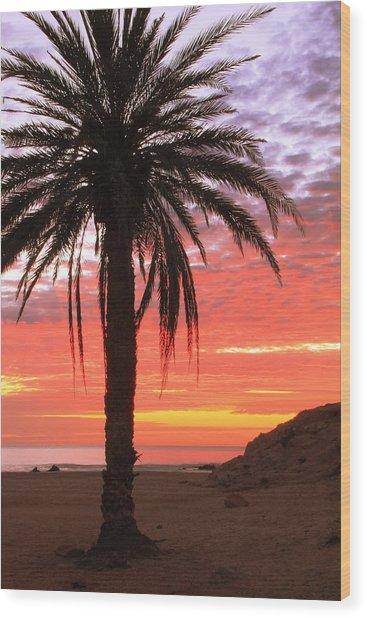 Palm Tree And Dawn Sky Wood Print