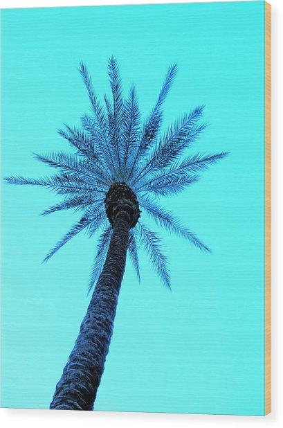 Palm Tree  Wood Print