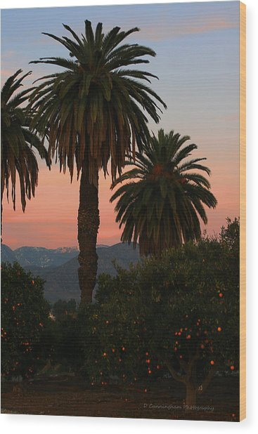 Palm Trees And Orange Trees Wood Print