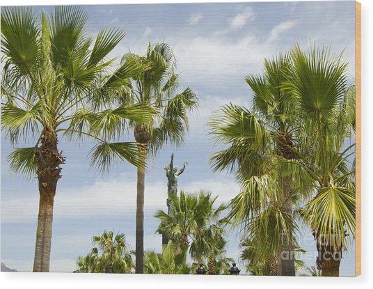 Palm Trees In Spain Wood Print by Perry Van Munster