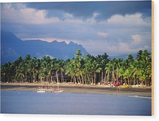 Palms And Beach, Sheraton Royale Hotel, Fiji Wood Print by Peter Hendrie
