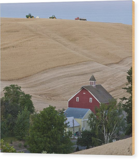 Palouse Wa Farm Wood Print