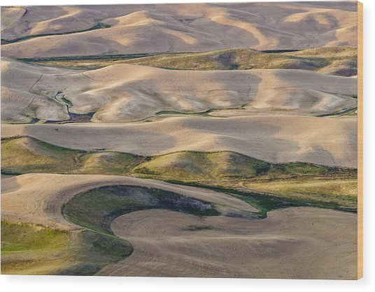 Palouse  Wa Wood Print