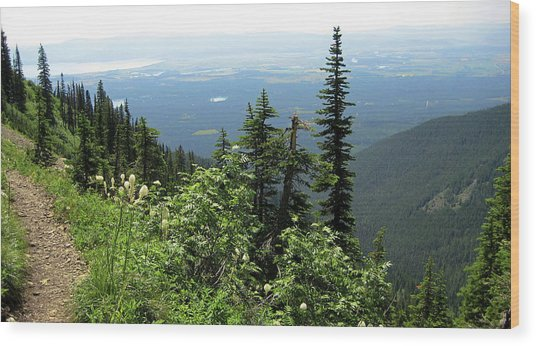 Panoramic Jewel Basin Montana Wood Print