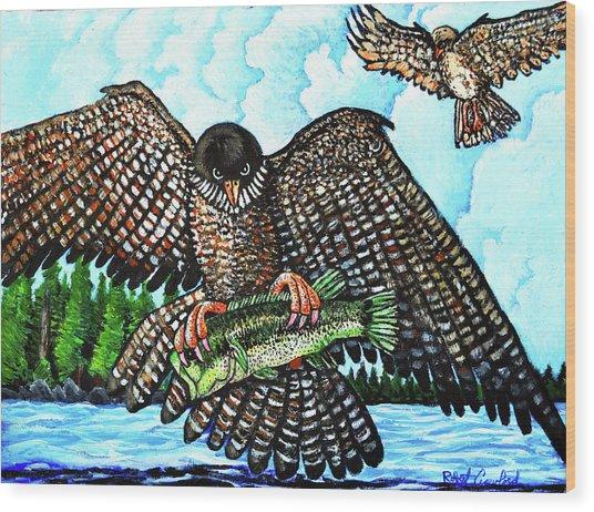 Paragon Falcon Wood Print by Bob Crawford