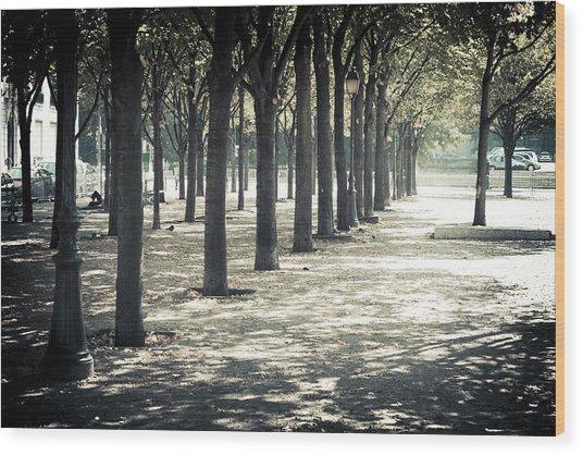Paris Park Wood Print