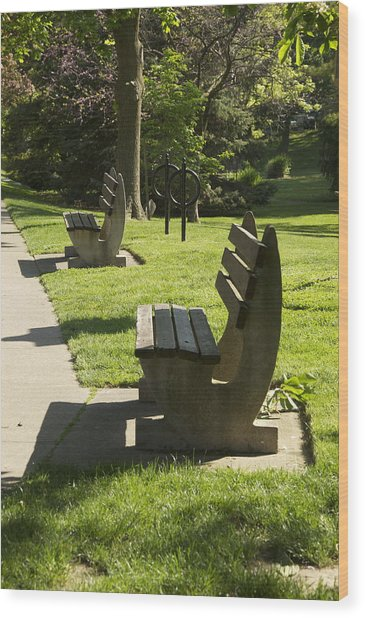 Wood Print featuring the photograph Park Benches by Rosemary Legge