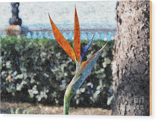 Park Flower Wood Print by Slavi Begov
