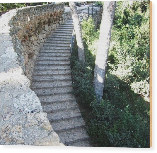 Park Guell Curved Steps Stairway In Barcelona Spain Wood Print by John Shiron