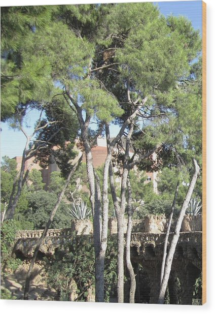 Park Guell Stone Pathway By Antoni Gaudi In Barcelona Spain Wood Print by John Shiron