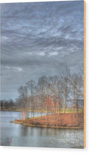 Park Peninsula Wood Print