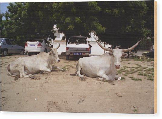 Parking Attendants Dakar Senegal Wood Print by Wayne King