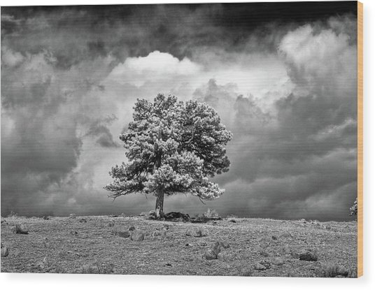 Passing Storm Wood Print