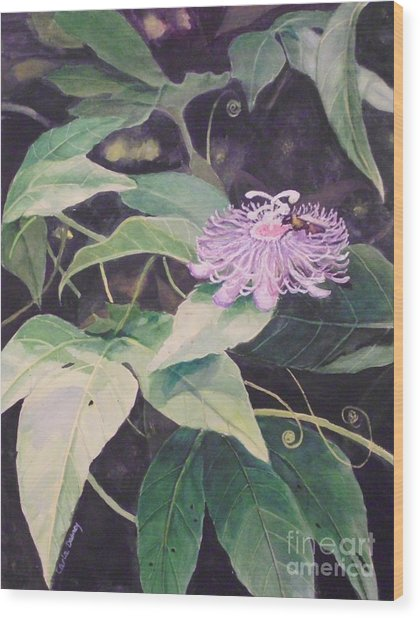 Passion Flower Wood Print by Carla Dabney