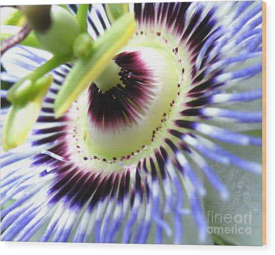 Passion Flower Detail Wood Print