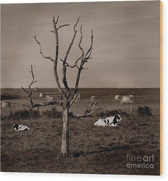 Pastorale 2 Wood Print
