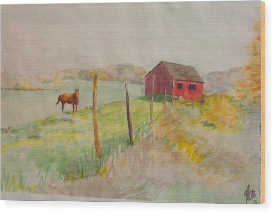 Pasture In Lagrangeville Wood Print