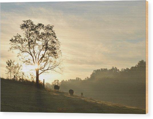 Pasture Sunrise Wood Print