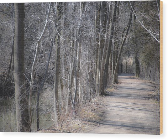 Path-ology Wood Print