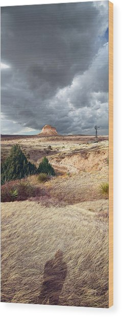 Pawnee Grasslands Wood Print by Ric Soulen