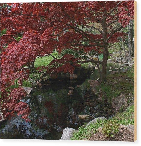 Peaceful Park Wood Print